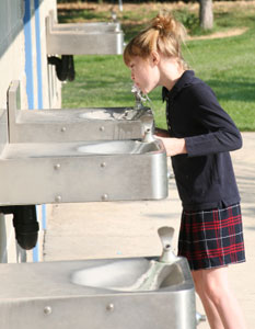 School Drinking Water Fountain